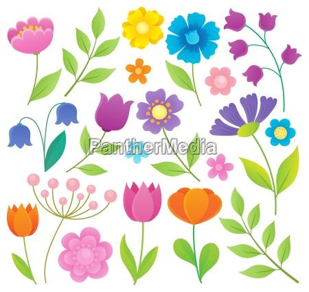 fiore pianta fioritura fiorire fiori primavera