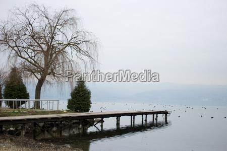wooden pier extending towards the laketrees