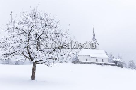 viaggio viaggiare chiesa colore albero inverno