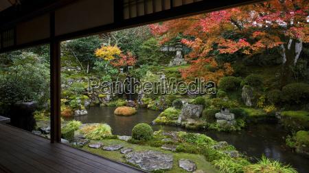 viaggio viaggiare colore albero giardino asia