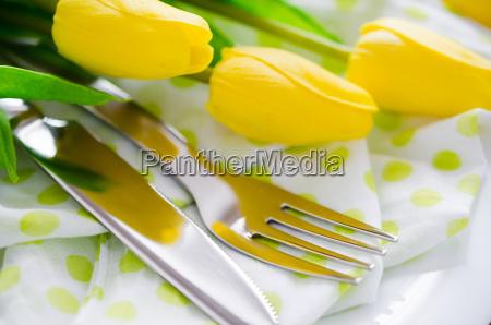 donna ristorante accordo vacanza fiore pianta