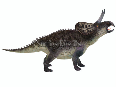 animale rettile lucertola dinosauro erbivoro
