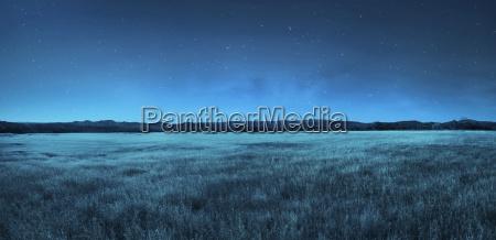 paesaggio di prato di notte