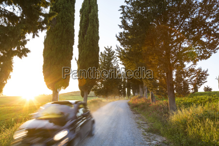 car driving along rural road lined