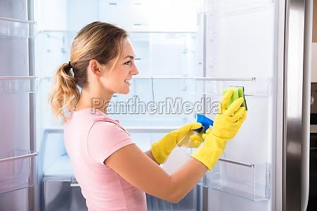 pulito cameriera collaboratrice domestica domestica congelatore