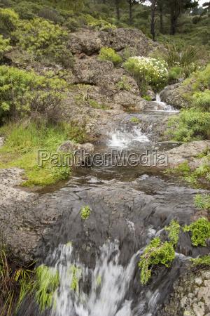 national park europe spain stream waterfall