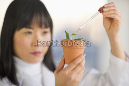 esperimento scienza ricerca agricoltura botanica orizzontale