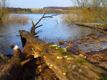 riserva naturale lago artificiale diga