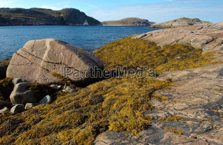 montagne acque pietra sasso artico rocce