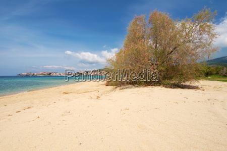 spiaggia di sabbiacalcidicagreciaeuropa