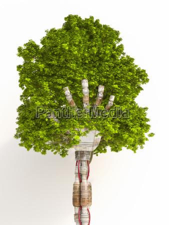 albero della tenuta della mano del