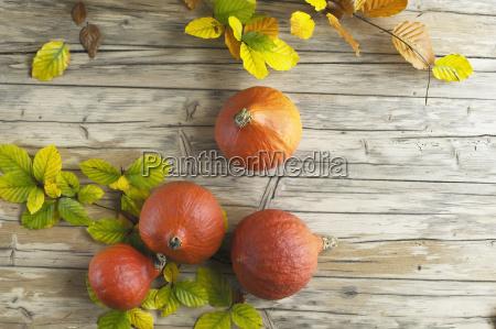 zucche hokkaido e foglie autunnali