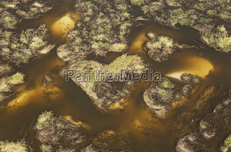 freshwater marshes with sandy streams channels