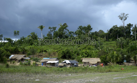 indigenous village sawle muybu people of