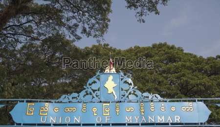 albero alberi ponte orizzontale allaperto thailandia