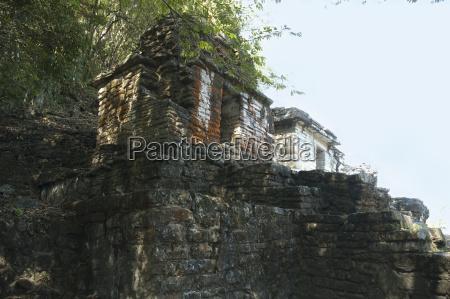 arte cultura famoso albero pietra sasso