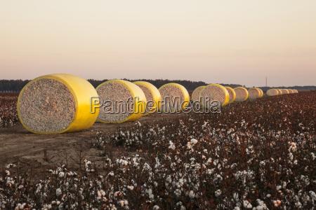 agricolo colore americano tramonto agricoltura nuvola