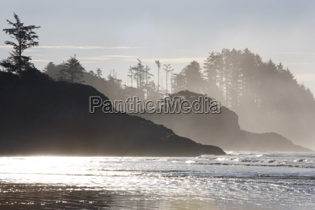 chestermans beach tofino vancouver island british