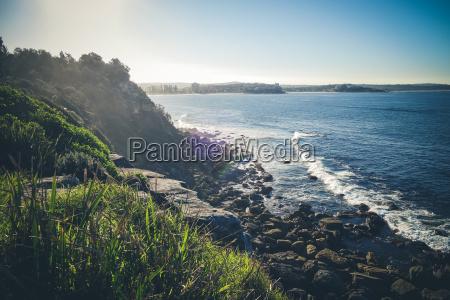 scogliere costiere di manly beach sydney