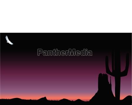 deserto tramonto alba sera scuro buio