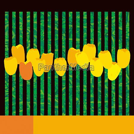 abstract yellow tulip flower arrangement
