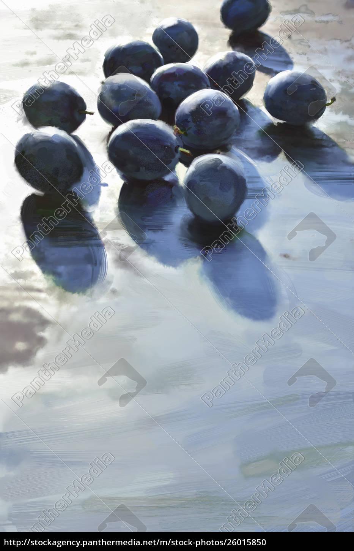 prugne, viola - 26015850