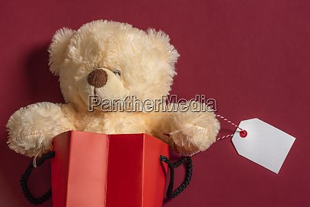giocattolo di orsacchiotto ripieno in una