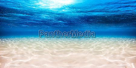 sfondo sabbioso blu sottacqua delloceano
