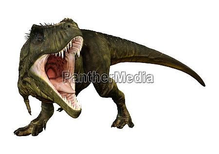 rendering 3d tyrannosaurus rex su bianco