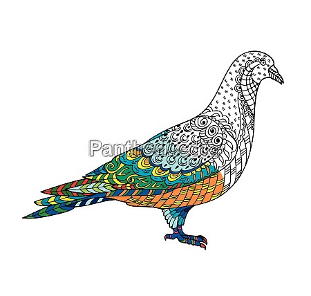 drawing stylized dove pigeon freehand sketch