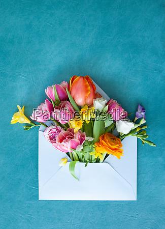 busta blu con fiori freschi