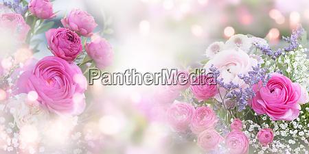 ID immagine 26184365