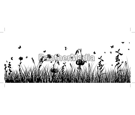 summer meadow background eps 10 vector