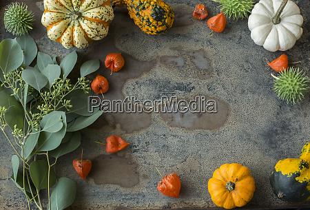 decorazione autunnale zucche ornamentali