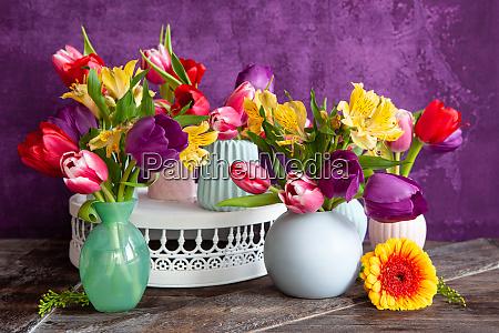 tulipani colorati in primavera