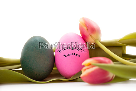 easter eggs with tulips flowers on