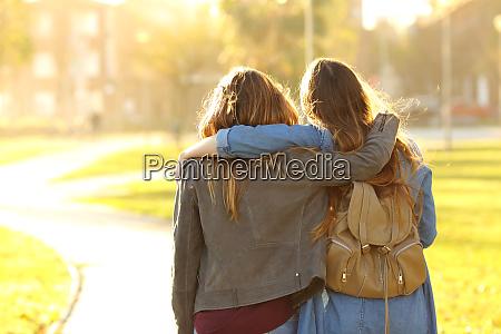 amici affettuosi che camminano al tramonto