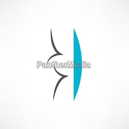 ID immagine 26616248
