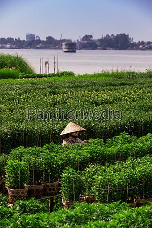 agricoltori del villaggio nel delta del
