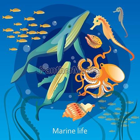 sfondo, della, vita, sottomarina, dell'oceano., illustrazione - 27181621