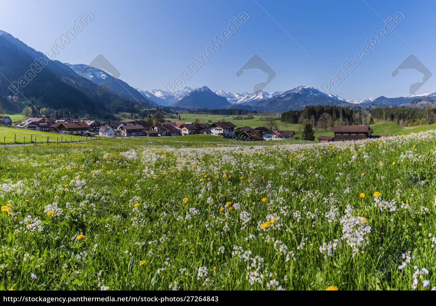 germania, baviera, allgaeu, oberallgaeu, alpi, allgaeu, illertal, rubi - 27264843