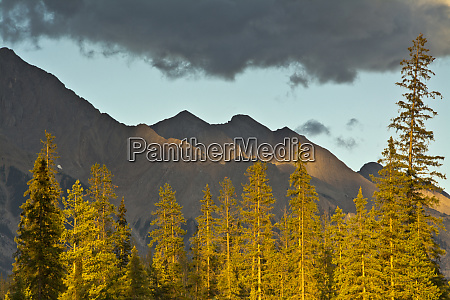 sunset from kicking horse river canadian