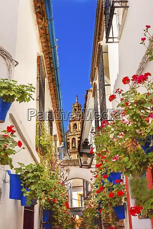 calleja de las flores old torre