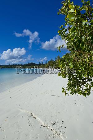 spiaggia di sabbia bianca bay de
