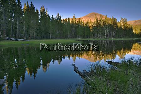 usa california yosemite national park mountain