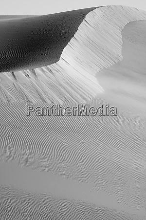 usa california black and white image
