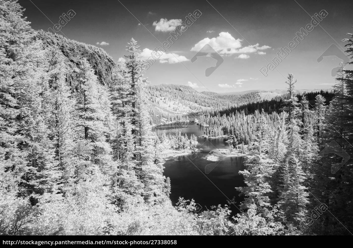 stati, uniti, california, laghi, mammut., panoramica, in, bianco - 27338058