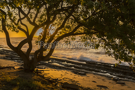 usa kauai wawalohi beach park sunset