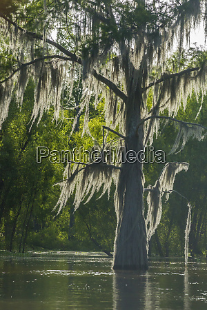 usa louisiana atchafalaya national heritage area