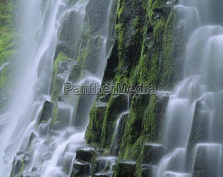 usa oregon proxy falls waterfall